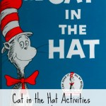 Cat In Hat Idea For Grandchildren
