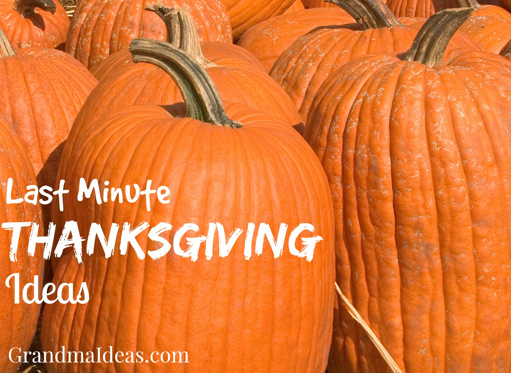Last minute Thanksgiving ideas. GrandmaIdeas.com