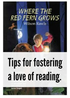Here are 12 tips to help foster the love of reading in your children.