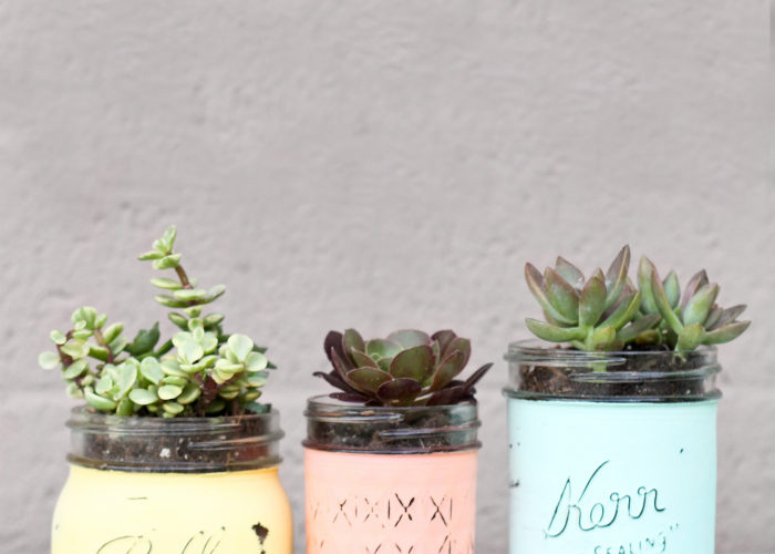 This mason jar succulent pot craft was featured at Party in Your PJs.